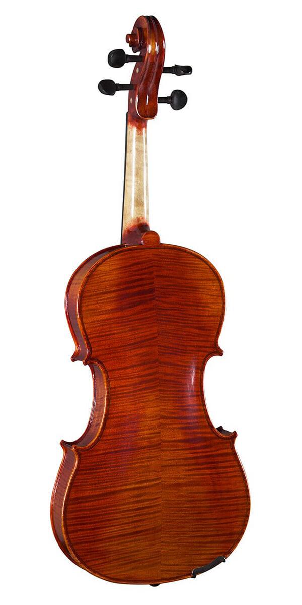 Viola Hidersine PiacenzaVA2